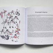 binnenkant boek 2 RK